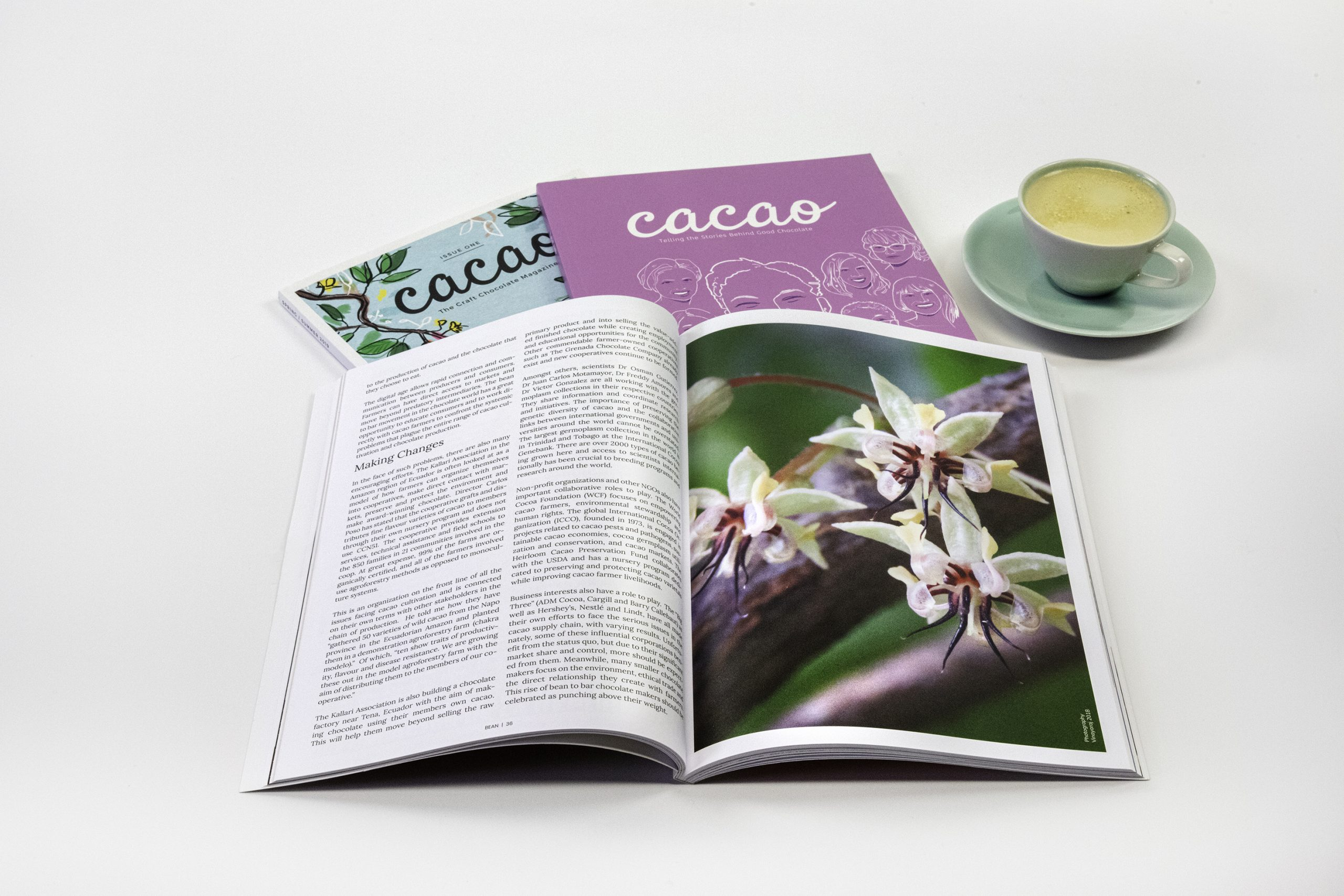 Gift 6 Read Cacao Magasine